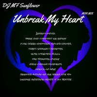Unbreak My Heart Mini Mix